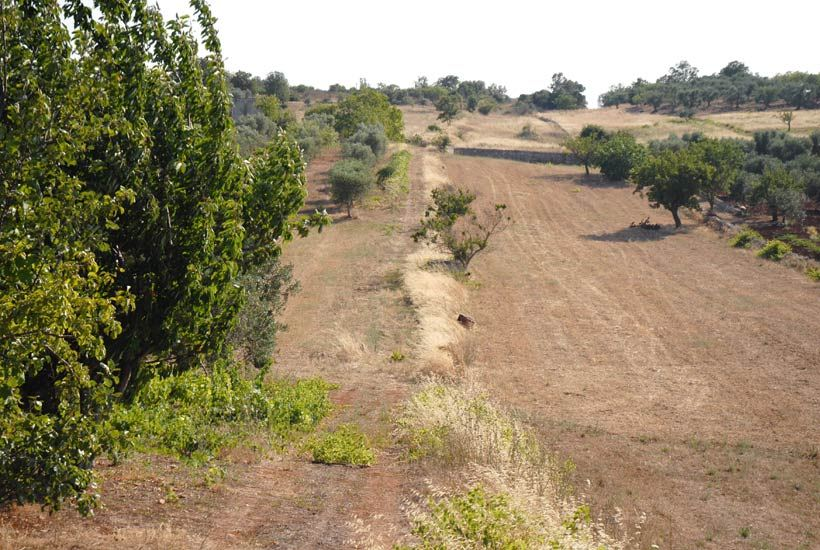 Building-Plot-for-Sale-in-Puglia