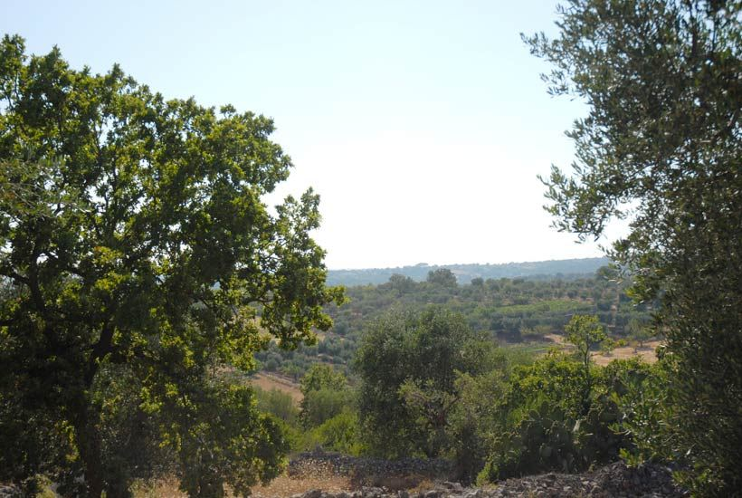 Building in Puglia plot for sale