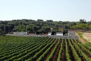 Casa Bellavista: house in Puglia project for sale