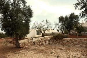 Design-Restore-in-Puglia