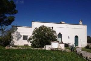properties for sale in cisternino
