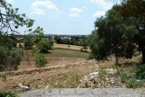 Melarosa, restoring trullo project for sale in Cisternino