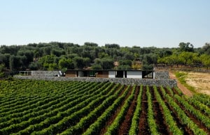 properties for sale in puglia